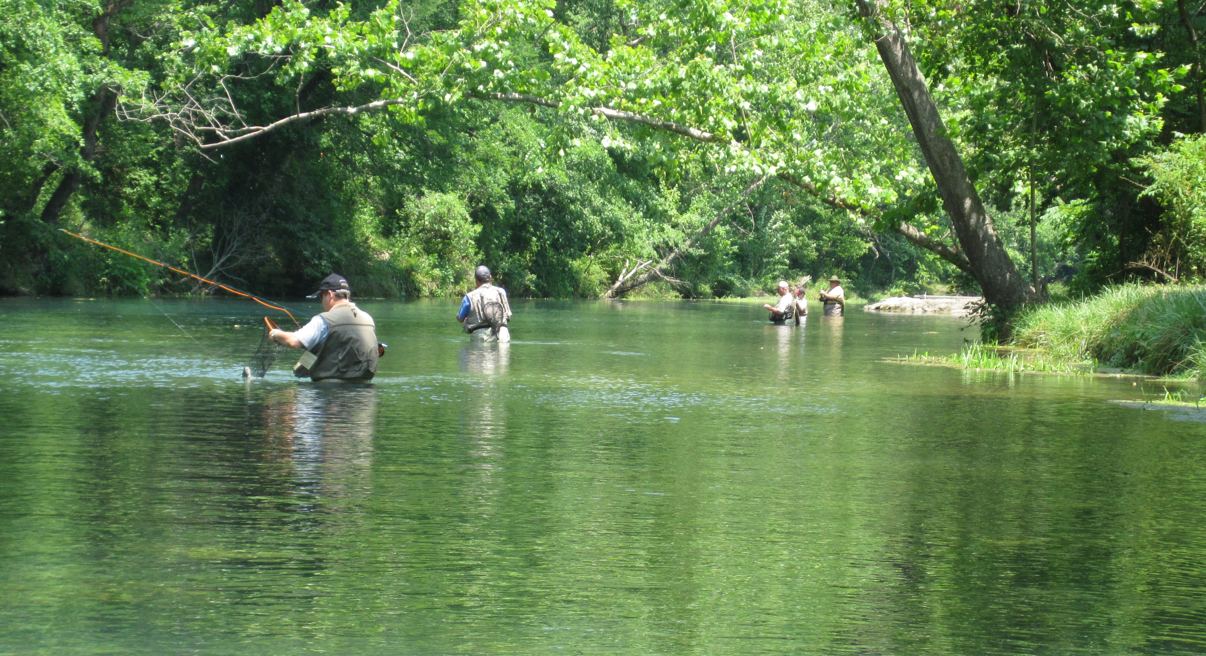 Trout park fishing bennett spring version base camp for Bennett springs trout fishing